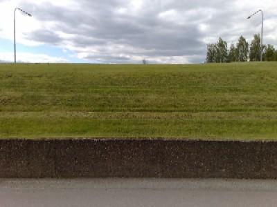 Gräs och mur