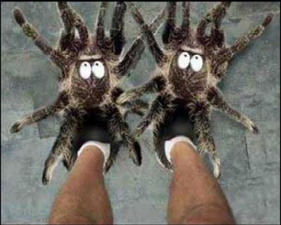 Spindeltofflan