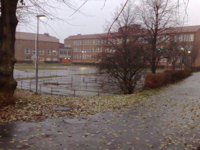 Zederslund2