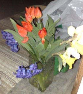 de sista blommorna fr trädgården