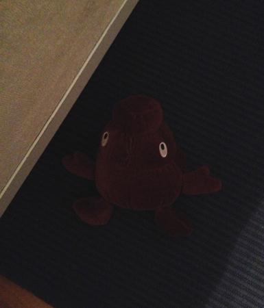 Bajs på sovrumsgolvet