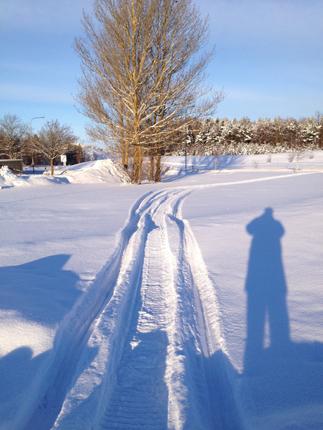 spår o skugga i snön