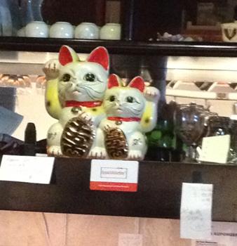 Vinkande katter