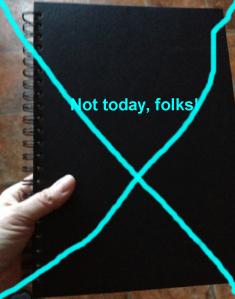 tofflans-svarta-bok not today folks