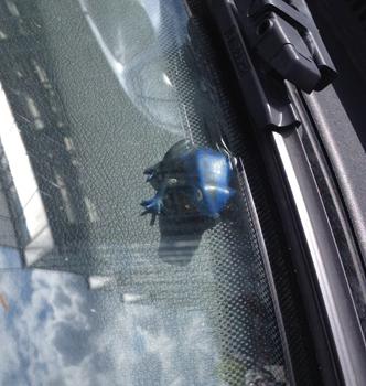 Blå groda i bilfönster