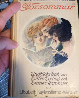 Försommar en ungflicksbok