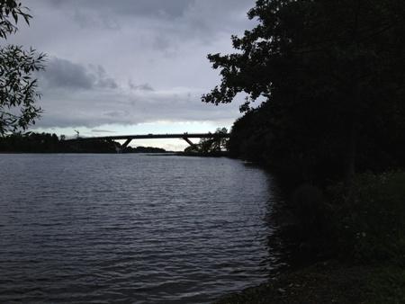 Bron junikväll