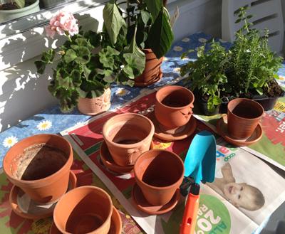 Planteringsdags