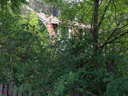 Hus i Den Hemliga Trädgården