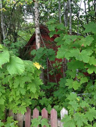 Litet hus i Den Hemliga Trädgården