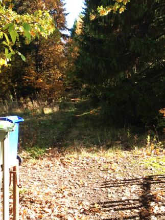 En väg in i Den Hemliga Trädgården