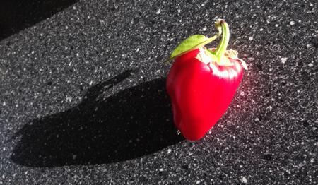 Röd paprika på svart köksbänk