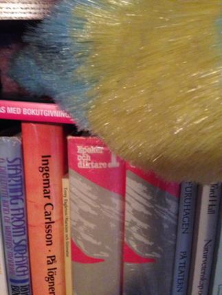 Damma böcker är INTE kul. Det är tidskrävande och skitigt!