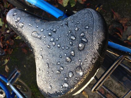 Frostig sadel