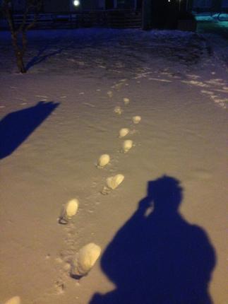 Fotspår i snön och fotografens skugga