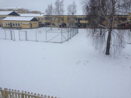 Snöig baksida