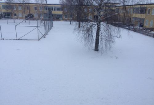 snöig marmorgon