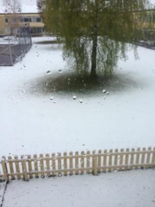 Snö 1 maj 2014