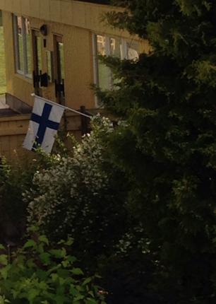 Finsk flagga