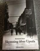 Skymning öfver Upsala