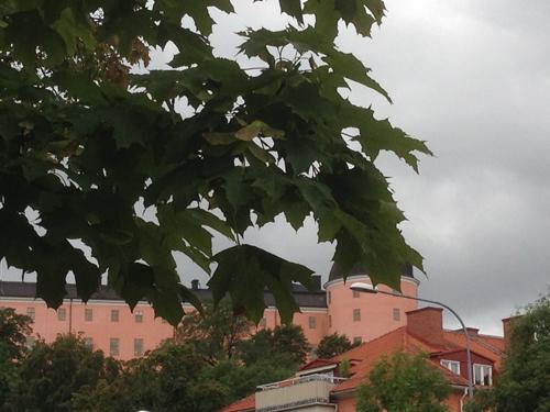 Uppsala slott bakom trädet
