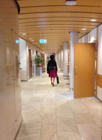 Kommunalrådet i maktens korridorer