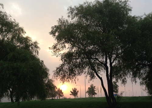 Soluppgång i september