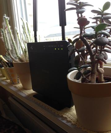 Router och kaktusar