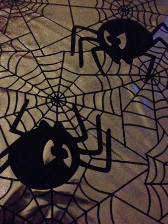 Spindelduk detalj