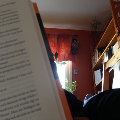 På köksgolvet med en bok