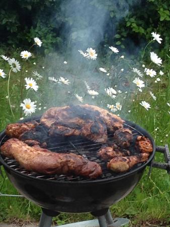 Grill med kött prästkragar bakom
