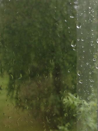 Regn på fönstret grönt utanför