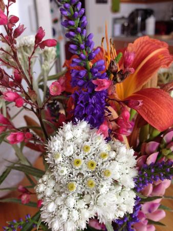 Blommor från Slottsträdgården