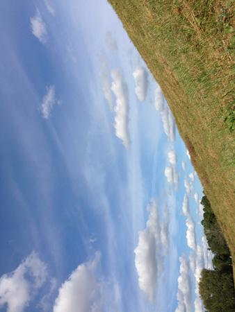 Himmel och gräs liggande
