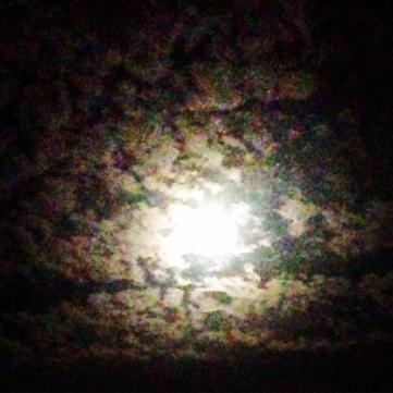 Månen 29 aug 2015