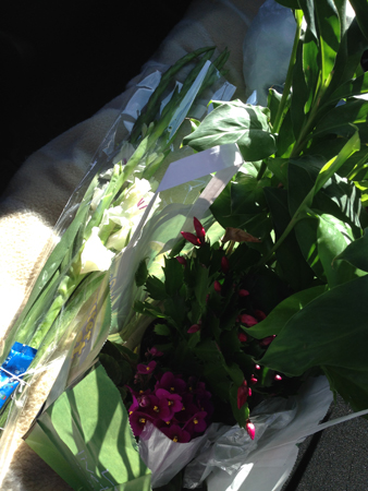 Baksätet fullt av blommor från Elliot