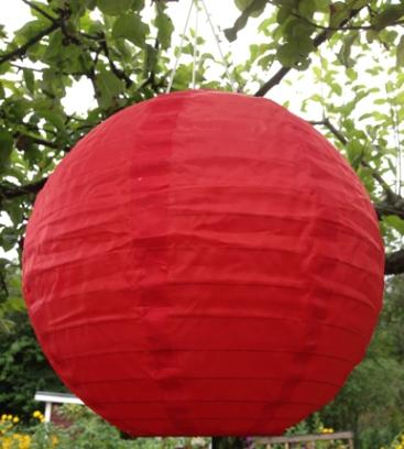 Röd lykta i träd