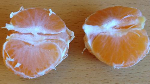 Clementin skalad och delad i två halvor