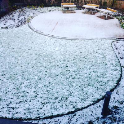 Den första snön vintern 2015