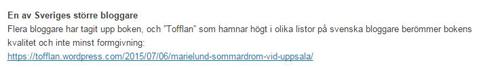 En av Sveriges större bloggare