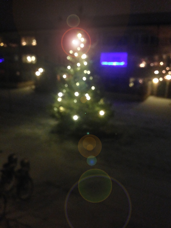 Julgran på gården och snö