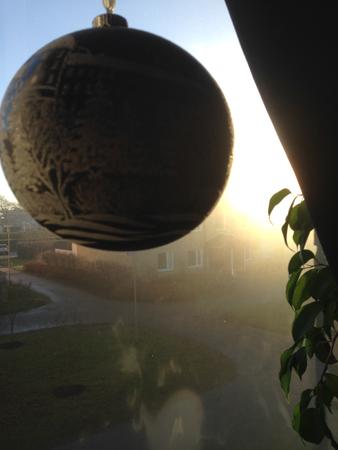 Soligt utanför fönster med Uppsalakula