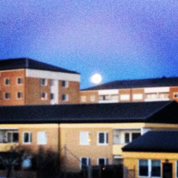 Fullmåne över husen
