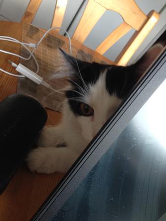Lucifer bakom datorn