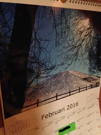 Februaribild i almanackan