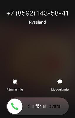 Ryskt nummer