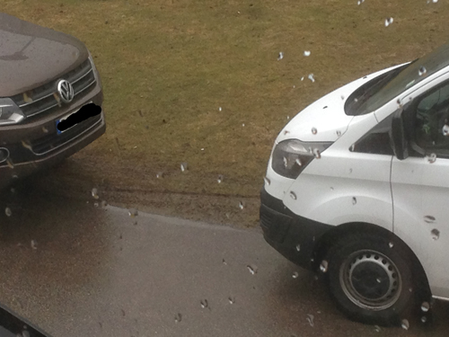 Bilar som sabbar gräsmattan
