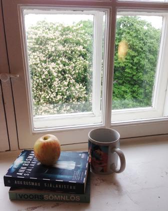 Bokfönster